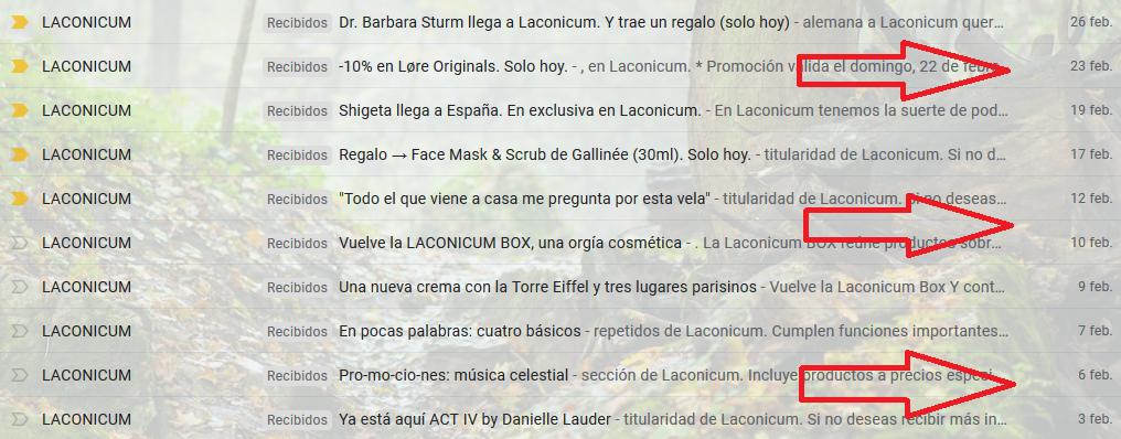 Ejemplo de email marketing de e-commerce